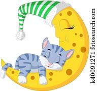 The cat sleep on the moon