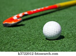 Field Hockey Stock Images Our Top 1000 Field Hockey Photos