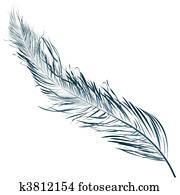 鳥の羽 イラスト 1000 鳥の羽 画像 Fotosearch