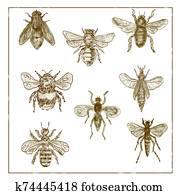 Vintage Bees and Flies Collection Duotone on White background
