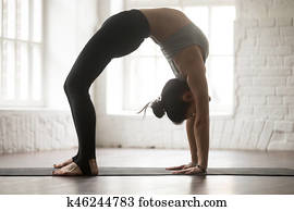 backbend photos  our top 1000 backbend stock images