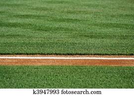 Baseline on a baseball field