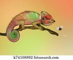 Chameleon in the jungle