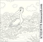 pelikan, per, a, kleiner see