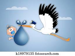 stork delivering newborn boy
