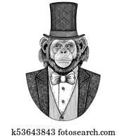 Chimpanzee, Monkey. Animal wearing jacket with bow-tie and silk hat, beaver hat, cylinder top hat. Elegant vintage animal. Image for tattoo, t-shirt, emblem, badge, logo, patch