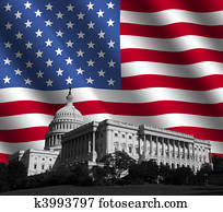 US Capitol with American flag