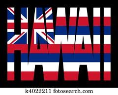 hawaii text with flag