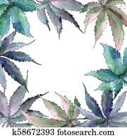 Cannabis green leaf. Leaf plant botanical garden floral foliage. Frame border ornament square.