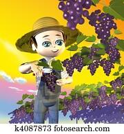 Farmer grapes