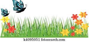 grass flower butterfly