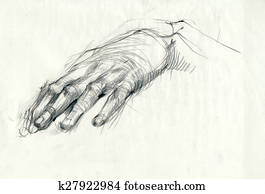 a hand drawing - hand, palm