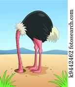 Ostrich hiding head in sand
