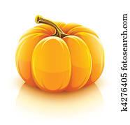 orange pumpkin vegetable