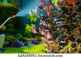 Garden Pest Control Spray