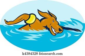 Cartoon dog swimming