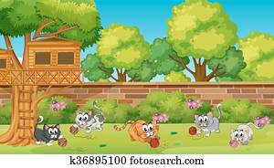 Five kittens playing in the garden