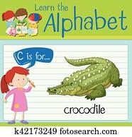 Flashcard, buchstabe c, gleichfalls, für, krokodil