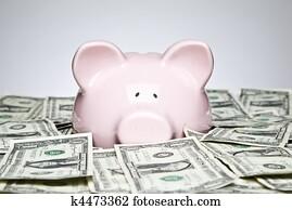Dollar bills and piggy bank