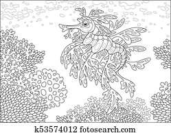 Leafy sea dragon on a coral reef