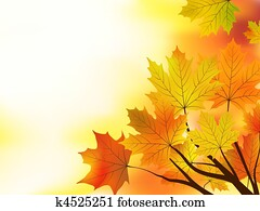 Multi colored fall maple leaves background.