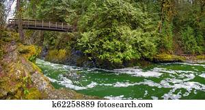 Panoramic view of the Englishman River Falls in Vancouver Island, BC Canada