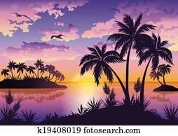 Tropical islands, palms, sky and birds