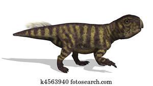 Psittacosaurus Dinosaur