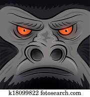 Square Faced Gorilla Ape