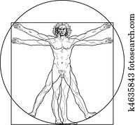 dass, vitruvian mann, (outline, version)