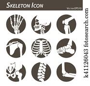 skelett, symbol