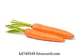 Carrots on White