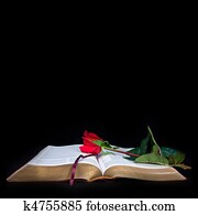 Bible on Black Background