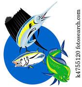 Sailfish dolphin fish tuna