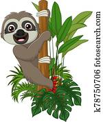 Cute baby sloth climbing on tree branch