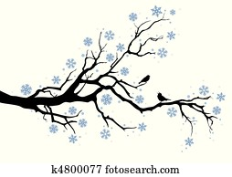 winter tree branch