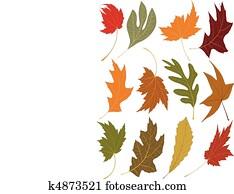 Wind blown fall leaves