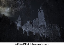 Medieval castle in full moon night