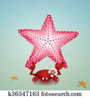 Crab with starfish