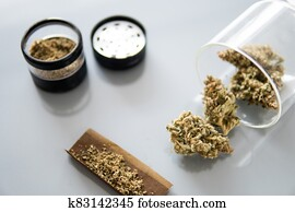 Sativa Indica medical health. Marijuana nature bud THC CBD . The pot leaves on buds.