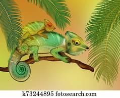 chameleons in the forest