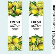 Lemon banner vector drawing. Citrus fruit frame template.