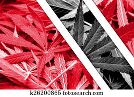 Trinidad and Tobago Flag on cannabis background. Drug policy. Legalization of marijuana