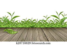 green tea leaves Wooden floor with