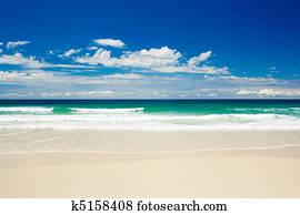 Tropical beach on sandy Gold Coast beach