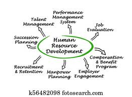 human resource development clipart and stock illustrations