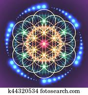 Sacred Geometry Flower of Life
