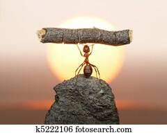 Statue of Labour, ants civilization