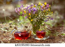 Cup and teapot in nature in the forest