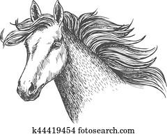 Freely Running White Beautiful Horse Mare